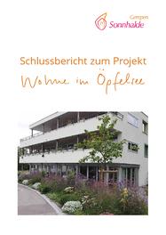 """Schlussbericht zum Projekt """"Wohne im Öpfelsee"""""""